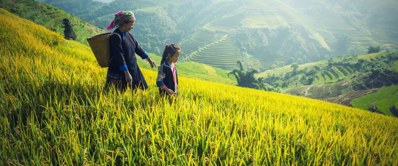 que visitar en vietnam en 15 dias