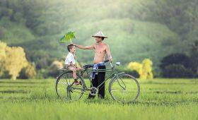 que ver en vietnam en 11 dias