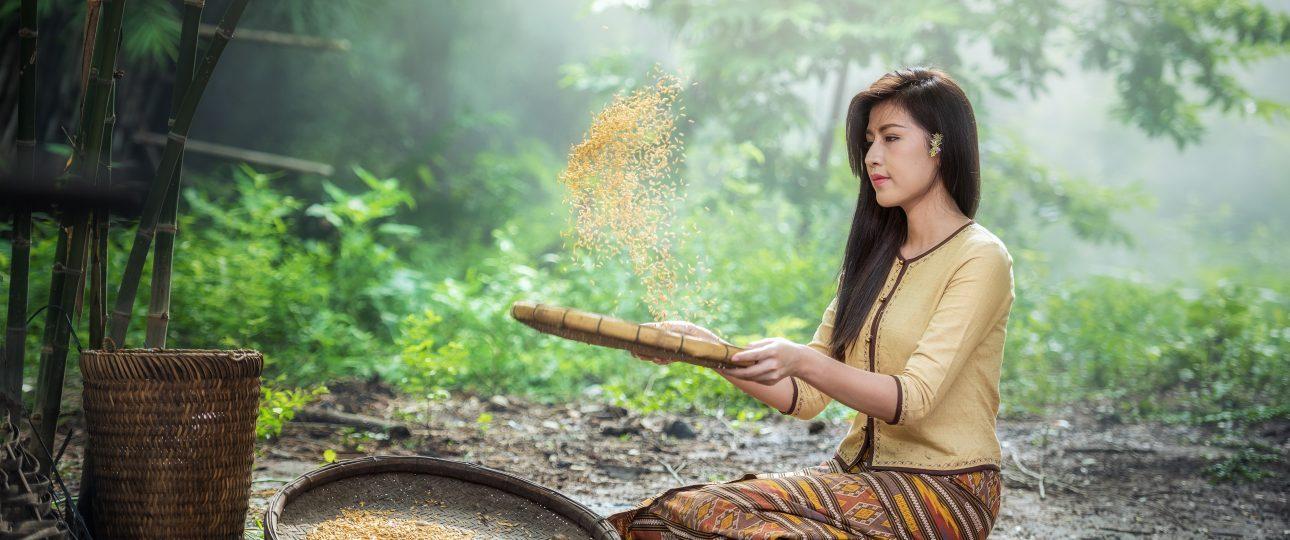 lo esencial de vietnam en 7 dias