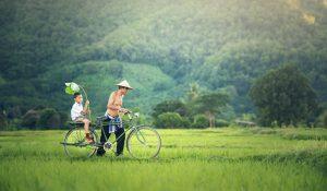 Por que visitar Vietnam